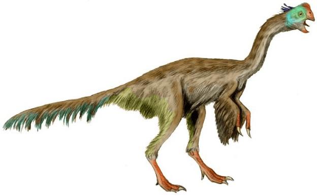 15-Cute-Dinosaurs-Thatll-Melt-Your-Heart-Make-You-Laugh-Gigantoraptor