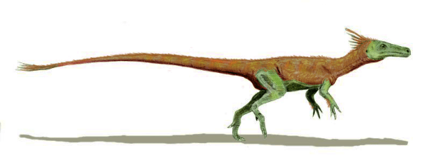 15-Cute-Dinosaurs-Thatll-Melt-Your-Heart-Make-You-Laugh-Juravenator