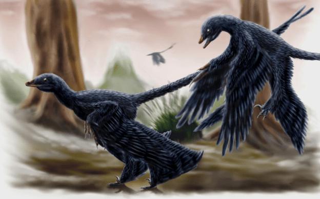 15-Cute-Dinosaurs-Thatll-Melt-Your-Heart-Make-You-Laugh-Microraptor