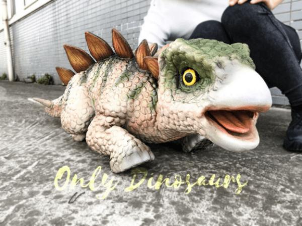 15-Cute-Dinosaurs-Thatll-Melt-Your-Heart-Make-You-Laugh-Stegosaurus