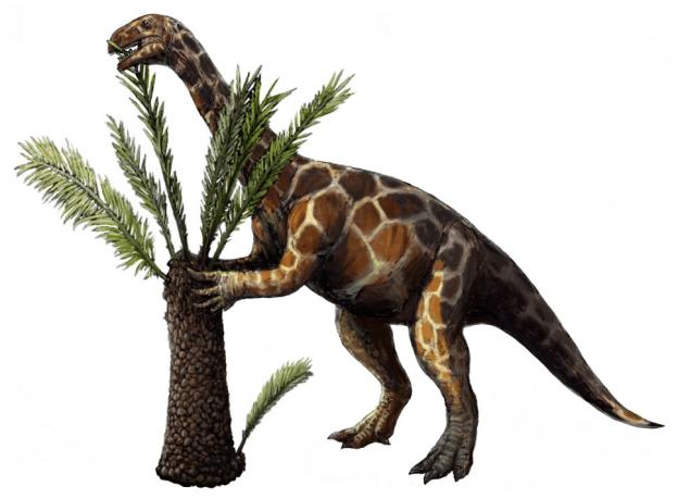 15-Cute-Dinosaurs-Thatll-Melt-Your-Heart-Make-You-Laugh-Unaysaurus
