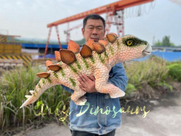 Adorable-Baby-Stegosaurus-Dino-Hand-Puppet5