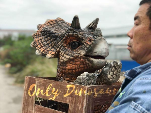 Adorable-Crate-Baby-Triceratops-Puppet2