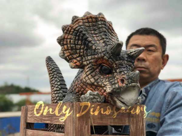 Adorable-Crate-Baby-Triceratops-Puppet3