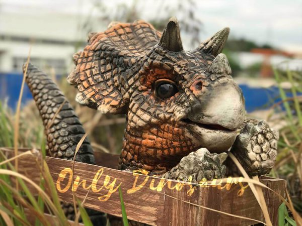 Adorable-Crate-Baby-Triceratops-Puppet6
