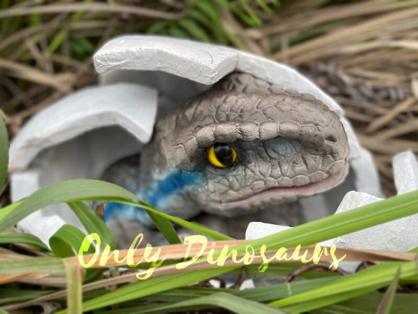 Animatronic-Raptor-egg-Hatching-Puppet5