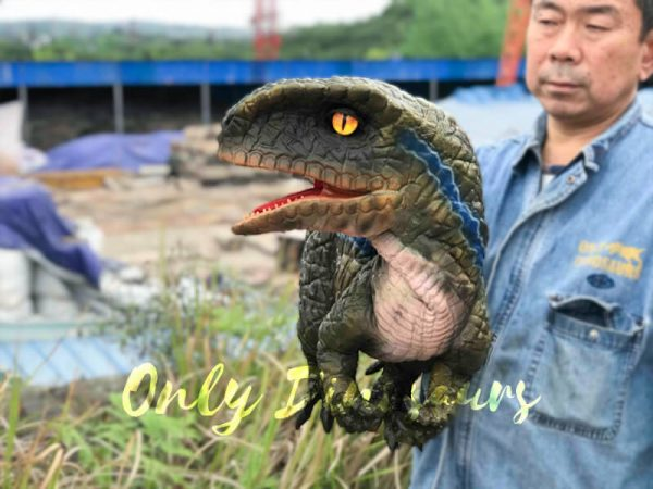 Arm-Baby-Velociraptor-Puppet-for-Kids1