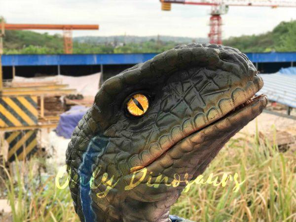 Arm-Baby-Velociraptor-Puppet-for-Kids3