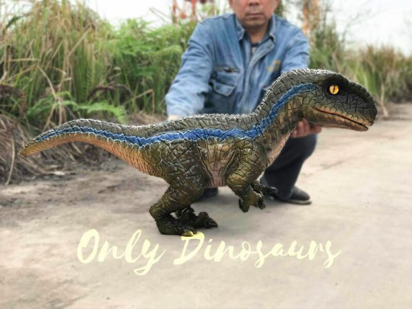 Arm-Baby-Velociraptor-Puppet-for-Kids4