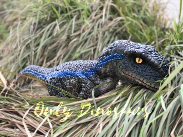 Arm-Baby-Velociraptor-Puppet-for-Kids6
