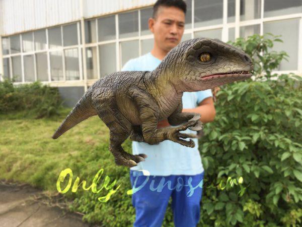 Attractive-Realistic-Baby-Velociraptor-Hand-Puppet2