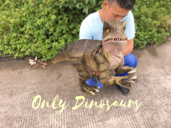 Attractive-Realistic-Baby-Velociraptor-Hand-Puppet3