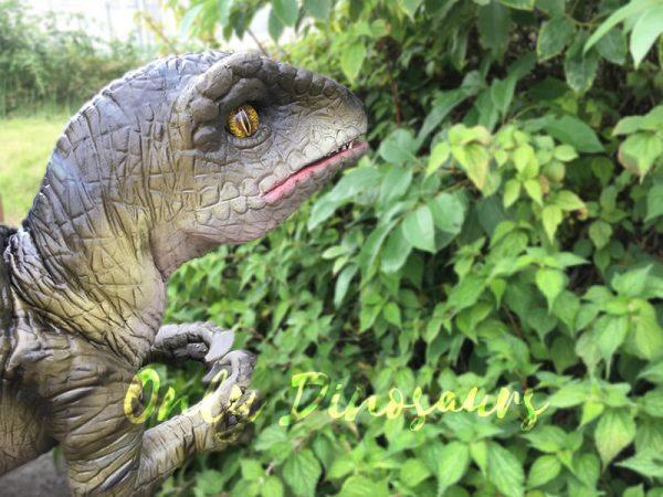 Attractive-Realistic-Baby-Velociraptor-Hand-Puppet5