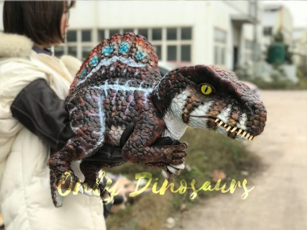 Brown-Adorable-Spinosaurus-puppet-sits-on-the-hand(2)