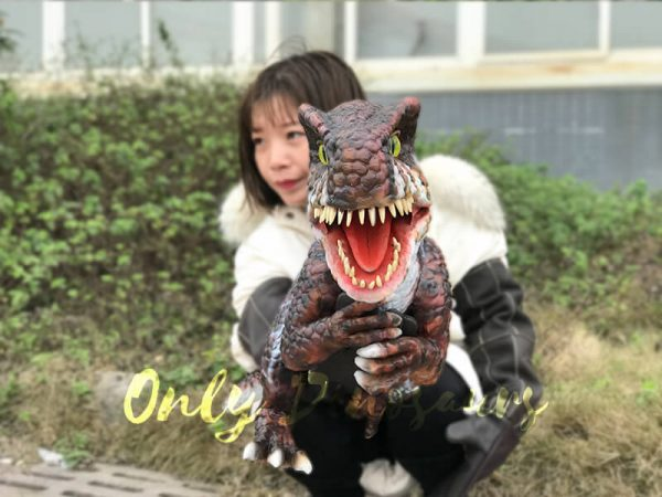 Brown-Adorable-Spinosaurus-puppet-sits-on-the-hand(4)