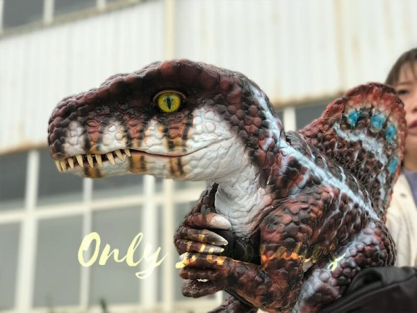 Brown-Adorable-Spinosaurus-puppet-sits-on-the-hand(6)