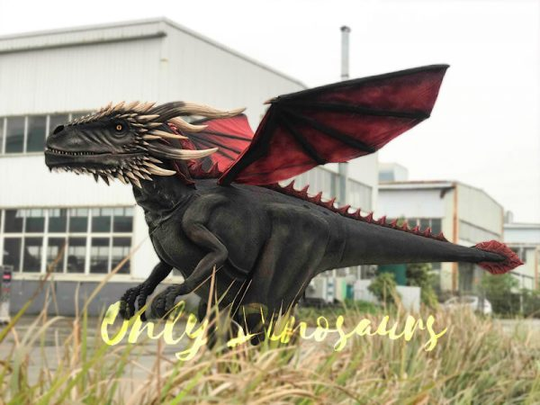 Coolest-Black-Flying-Dragon-with-Hidden-Legs(3)