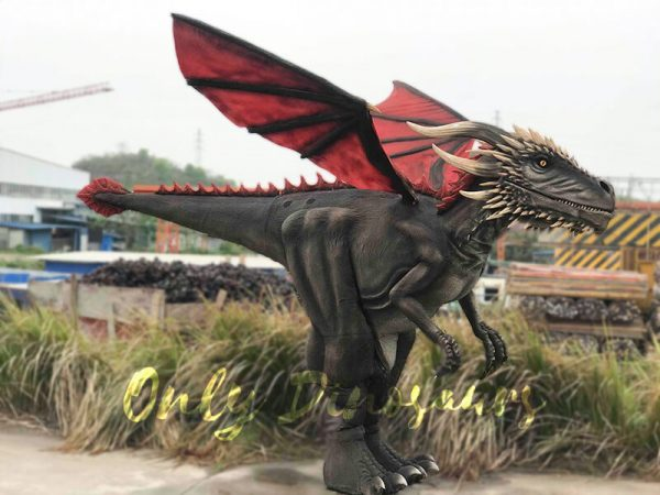 Coolest-Black-Flying-Dragon-with-Hidden-Legs(4)
