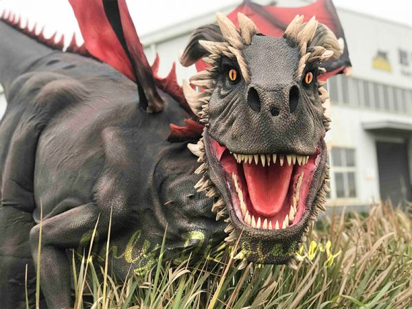 Coolest-Black-Flying-Dragon-with-Hidden-Legs(5)