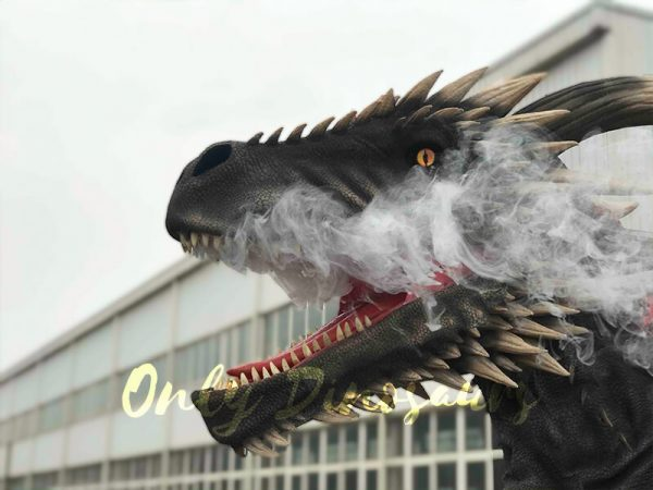Coolest-Black-Flying-Dragon-with-Hidden-Legs6