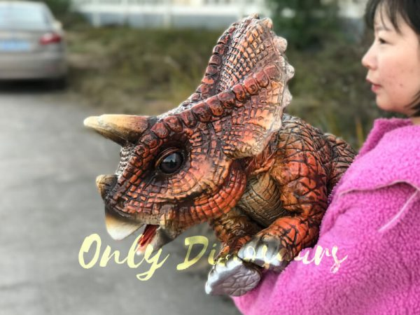 Cute-Baby-Triceratops-Dinosaur-Puppet3-1