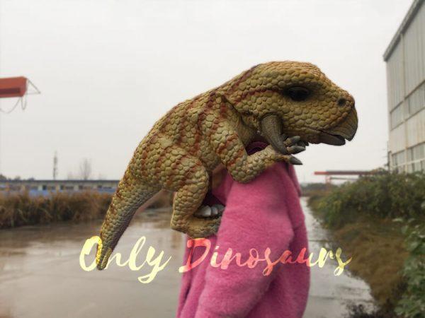 Cute-Baby-Triceratops-Dinosaur-Puppet3-2