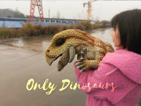 Cute-Baby-Triceratops-Dinosaur-Puppet6-1