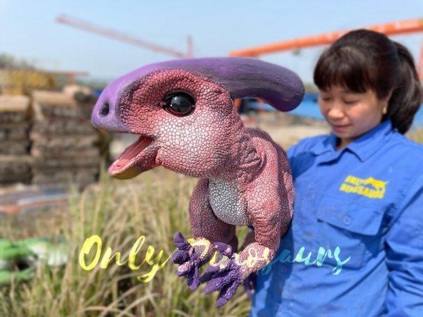 Cute-Handheld-Parasaurolophus-Cub-With-Beautiful-Purple-Color1
