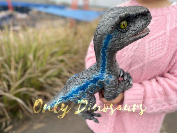 Cute-Mini-Baby-Velociraptor-Cub-with-Gray-Blue-Color3