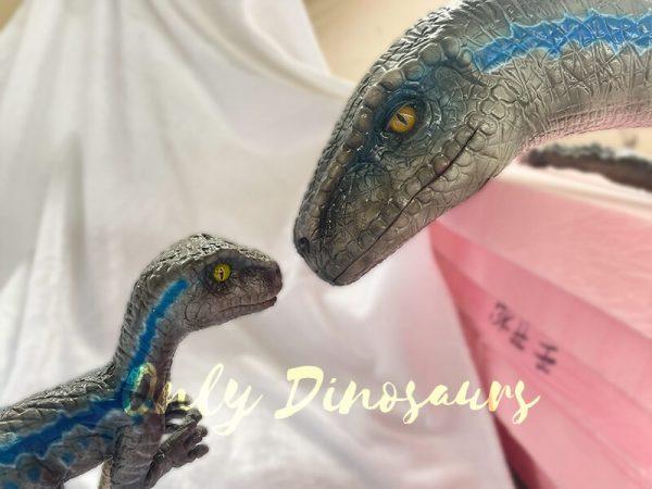 Cute-Mini-Baby-Velociraptor-Cub-with-Gray-Blue-Color6