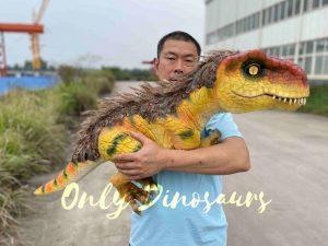 Flexible False Arm T-Rex Puppet on Sale