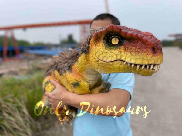 Flexible-False-Arm-T-Rex-Puppet-on-Sale3