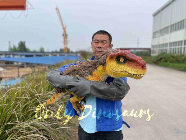 Flexible-False-Arm-T-Rex-Puppet-on-Sale5