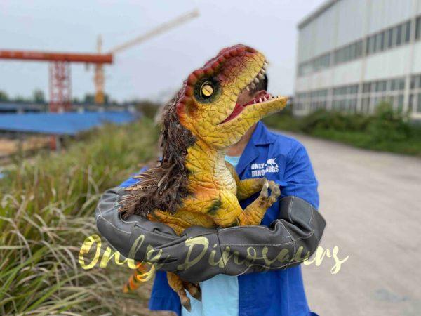 Flexible-False-Arm-T-Rex-Puppet-on-Sale6