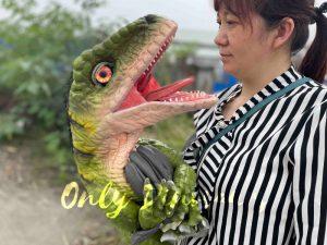Full-body Baby Velociraptor Cub on Sale