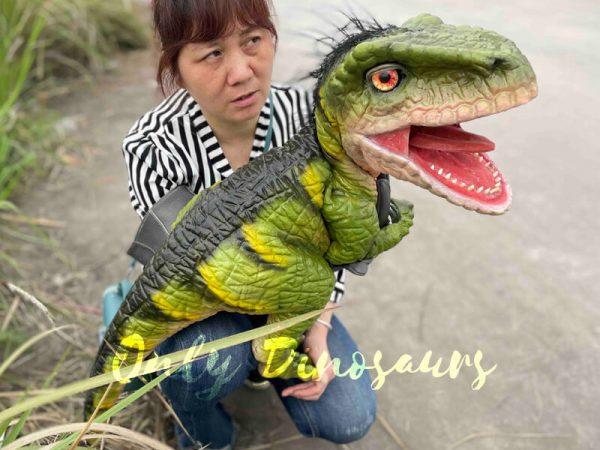 Full-Body-Baby-Velociraptor-Cub-on-sale5
