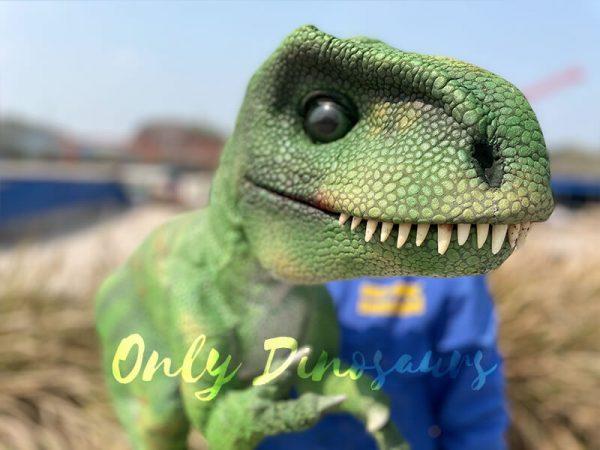 Green-Adorable-Baby-Tyrannosaurus-Rex-Hand-Puppet3