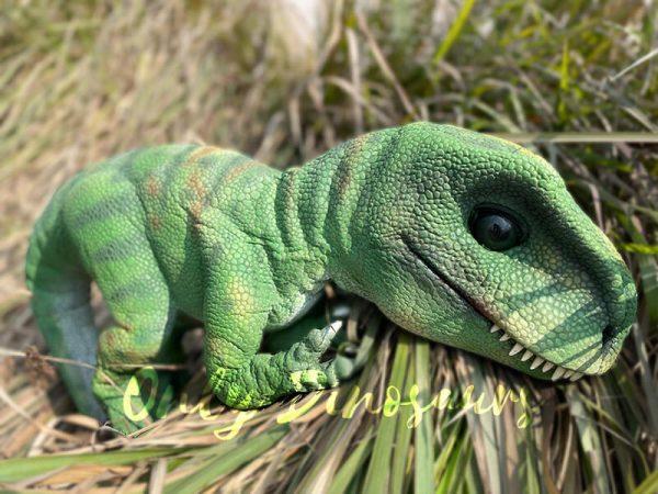 Green-Adorable-Baby-Tyrannosaurus-Rex-Hand-Puppet4