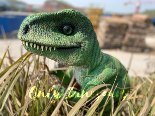 Green-Adorable-Baby-Tyrannosaurus-Rex-Hand-Puppet5