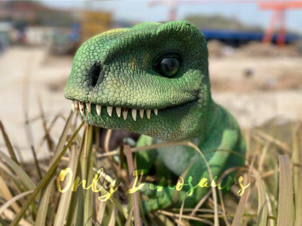 Green-Adorable-Baby-Tyrannosaurus-Rex-Hand-Puppet6