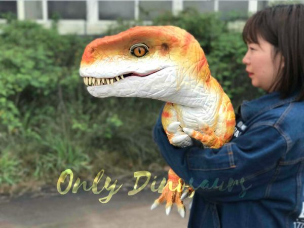 Hand-held-Baby-Tyrannosaurus-Rex-with-adorable-appearance1
