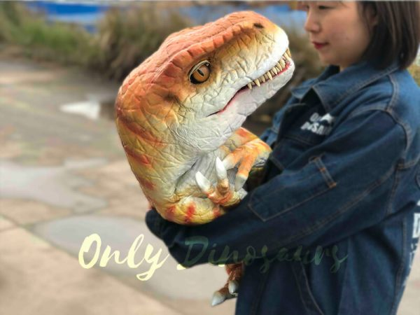 Hand-held-Baby-Tyrannosaurus-Rex-with-adorable-appearance2
