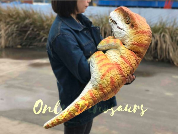 Hand-held-Baby-Tyrannosaurus-Rex-with-adorable-appearance3