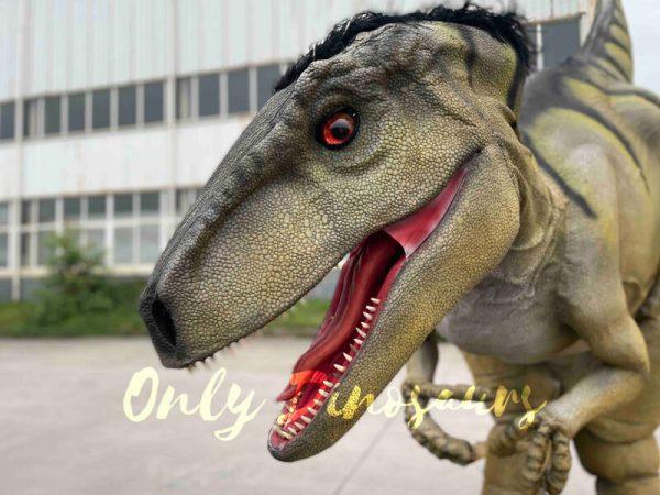 Hidden-Legs-Velociraptor-Suit-for-Dinosaur-Event4