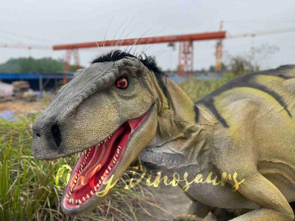 Hidden-Legs-Velociraptor-Suit-for-Dinosaur-Event6