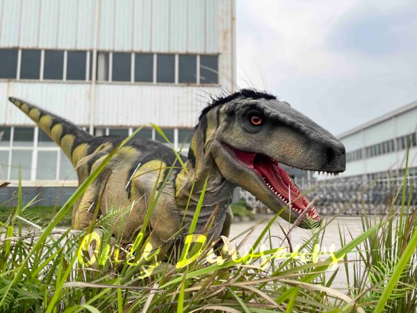 Hidden-Legs-Velociraptor-Suit-for-Dinosaur-Event7