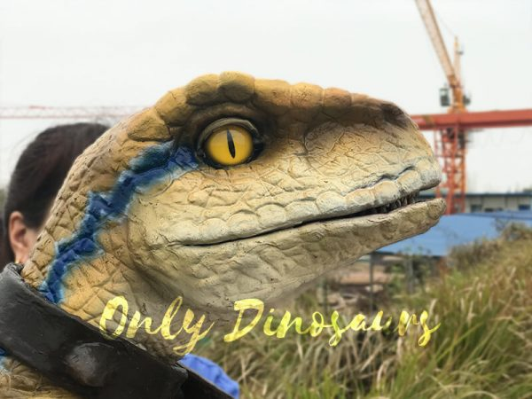 Interactive-Handheld-Tyrannosaurus-Rex-Cub1
