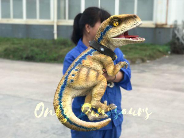 Interactive-Handheld-Tyrannosaurus-Rex-Cub4