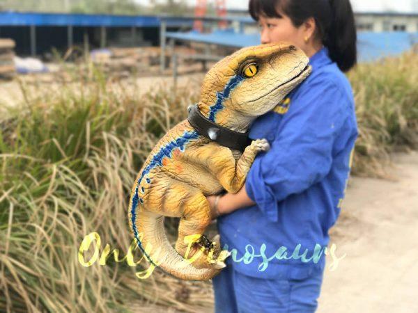 Interactive-Handheld-Tyrannosaurus-Rex-Cub5