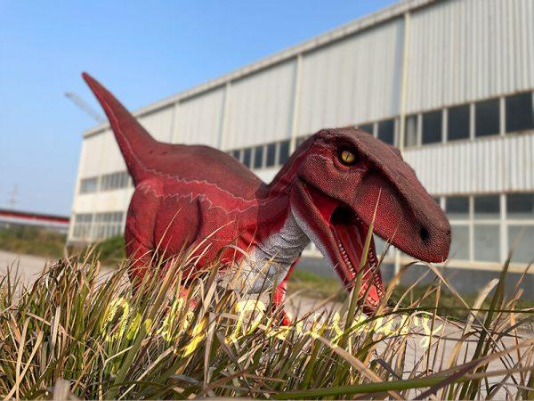 Jurassic-Park-Red-Raptor-Dinosaur-Costume(4)